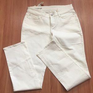 Ann Taylor Modern Fit Slim Leg Jeans